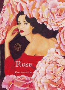Rose aromatherapy insight card