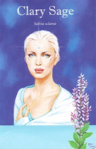 Clary Sage Insight card