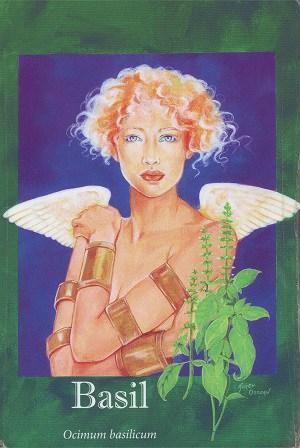 Basil Aromatherapy Insight card