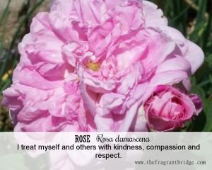 Rose affirmation