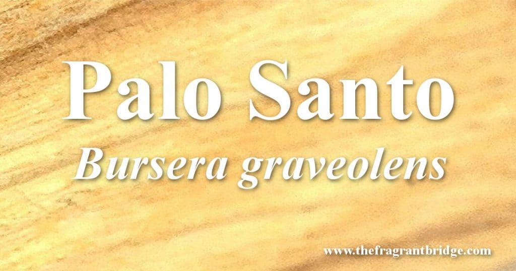Palo santo header