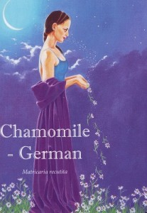 Chamomile German insight card