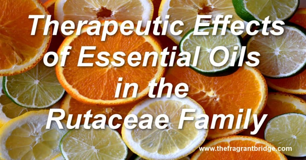Therapeutic Effects of Essential Oils in the Rutaceae Family