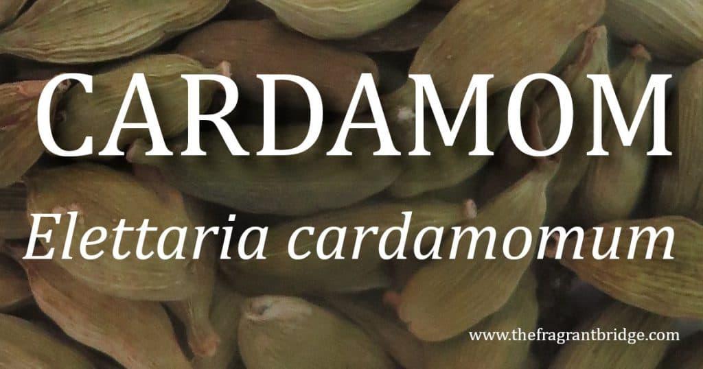 Cardamomheader