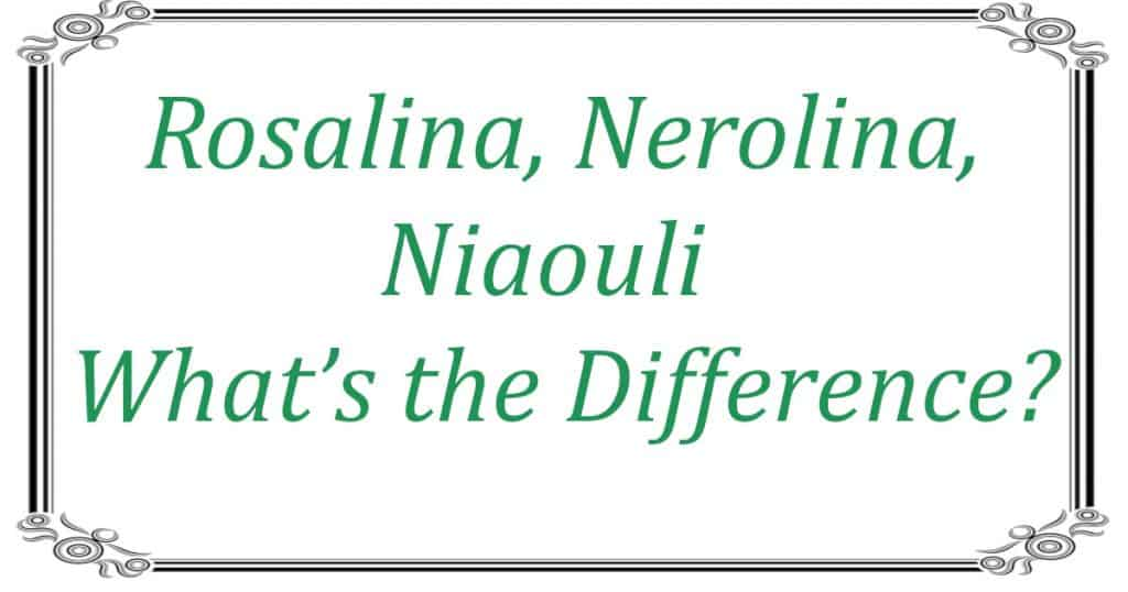 Rosalina, Nerolina, Niaouli - What's the Difference header