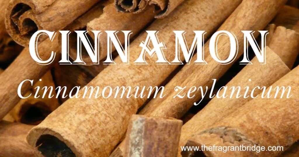 Cinnamon header